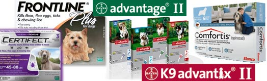 Frontline Plus, Advantage, Comfortis, Certifect, flea control